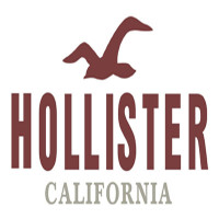 img- Hollister Application