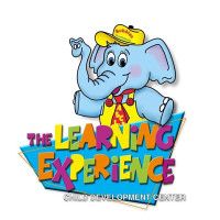 img- The Learning Experience